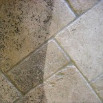 Tile and Grout Cleaning in state of Michigan