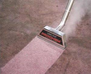 Canton Steam Carpet Cleaning