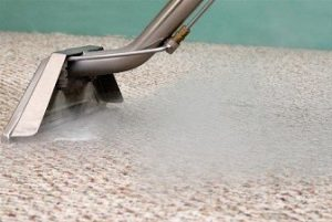 Carpet Cleaning steam want cleaning berber carpet
