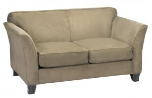 Loveseat Cleaning Special $69